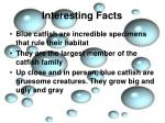 interesting facts2