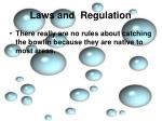 laws and regulation3