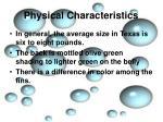 physical characteristics3