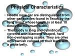 physical characteristics6