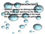 unusual characteristics7