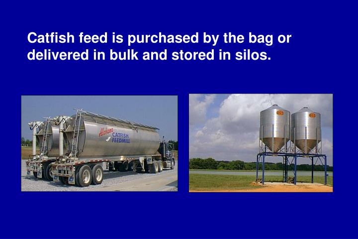Catfish feed is purchased by the bag or delivered in bulk and stored in silos.