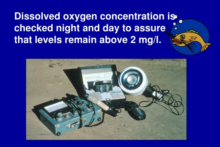 Dissolved oxygen concentration is