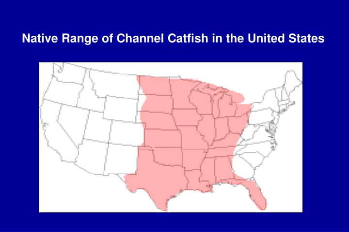 Native range of channel catfish in the united states