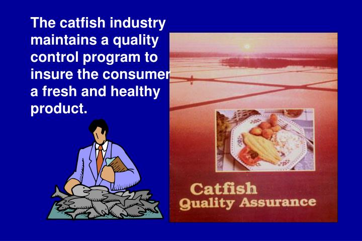 The catfish industry