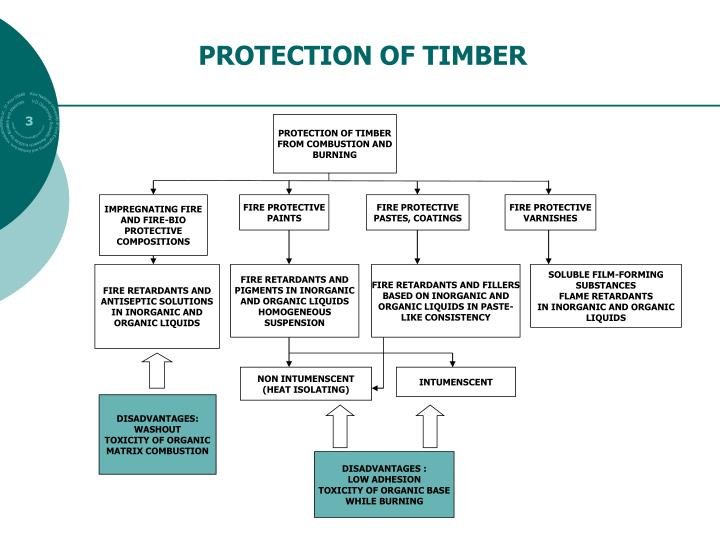 PROTECTION OF TIMBER