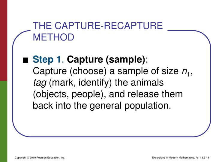 THE CAPTURE-RECAPTURE