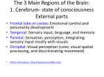 the 3 main regions of the brain 1 cerebrum state of consciousness external parts