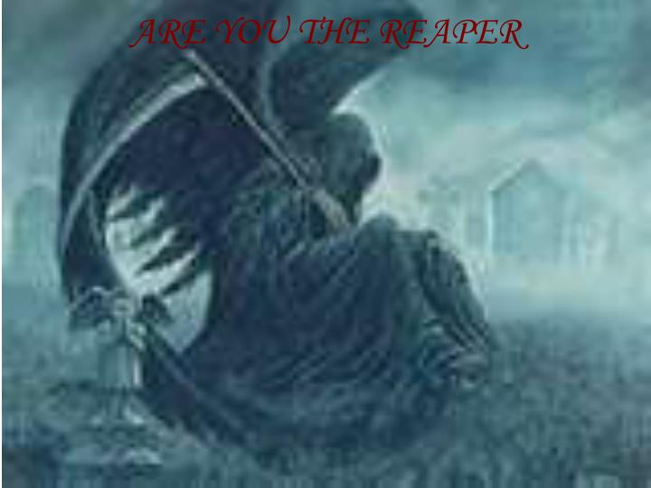ARE YOU THE REAPER