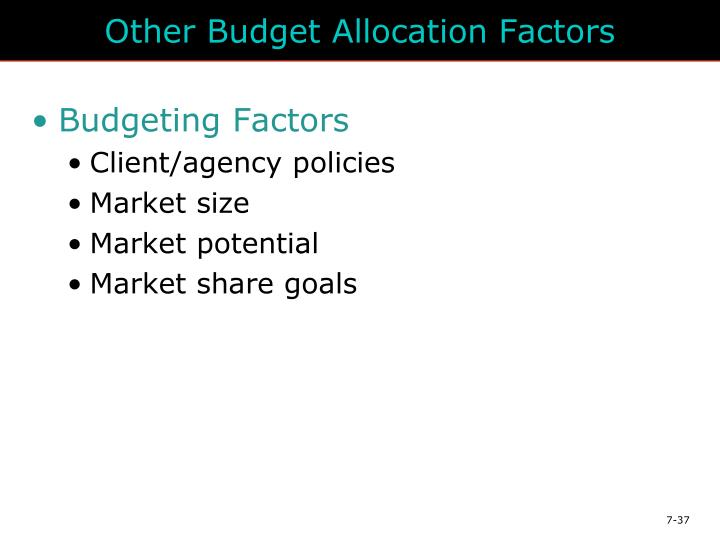 Other Budget Allocation Factors