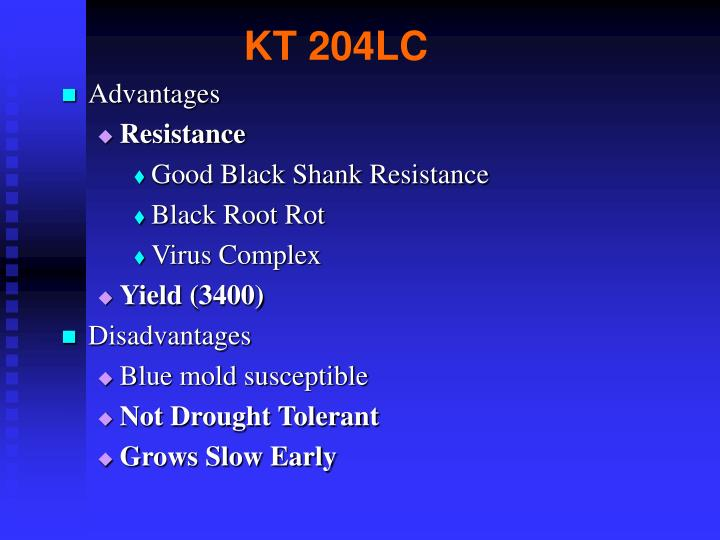 KT 204LC
