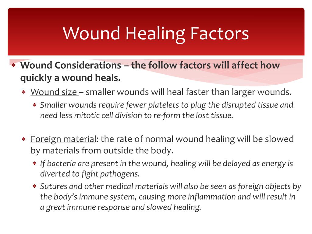 PPT - Wound Repair PowerPoint Presentation - ID:5323746