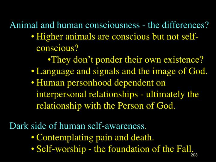 Animal and human consciousness - the differences?