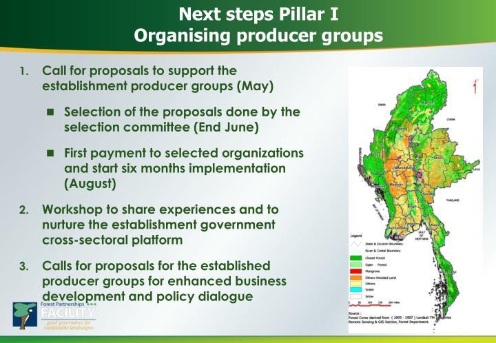 Next steps Pillar I