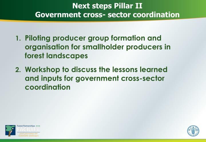 Next steps Pillar II