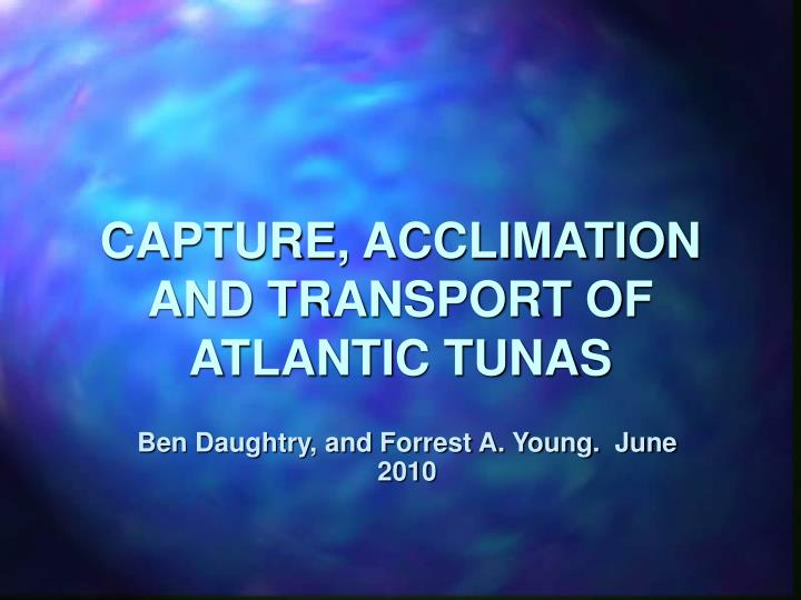capture acclimation and transport of atlantic tunas n.