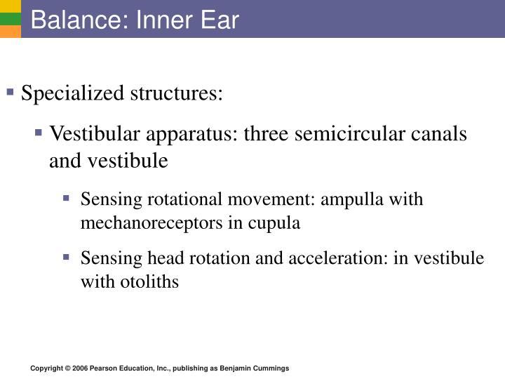 Balance: Inner Ear