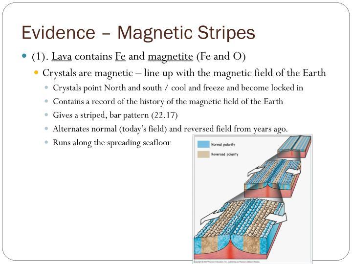 Evidence – Magnetic Stripes