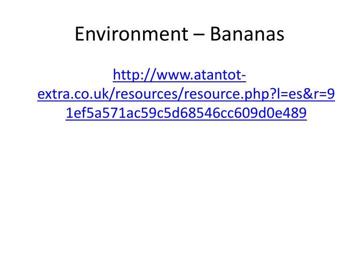 Environment – Bananas