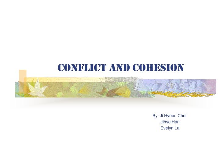 conflict and cohesion n.
