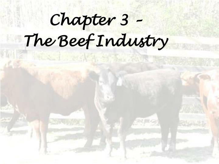 chapter 3 the beef industry n.