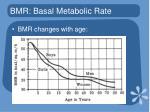 bmr basal metabolic rate1