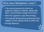 what does metabolism mean