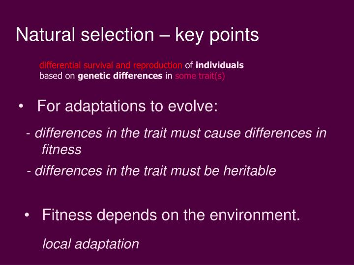 Natural selection – key points