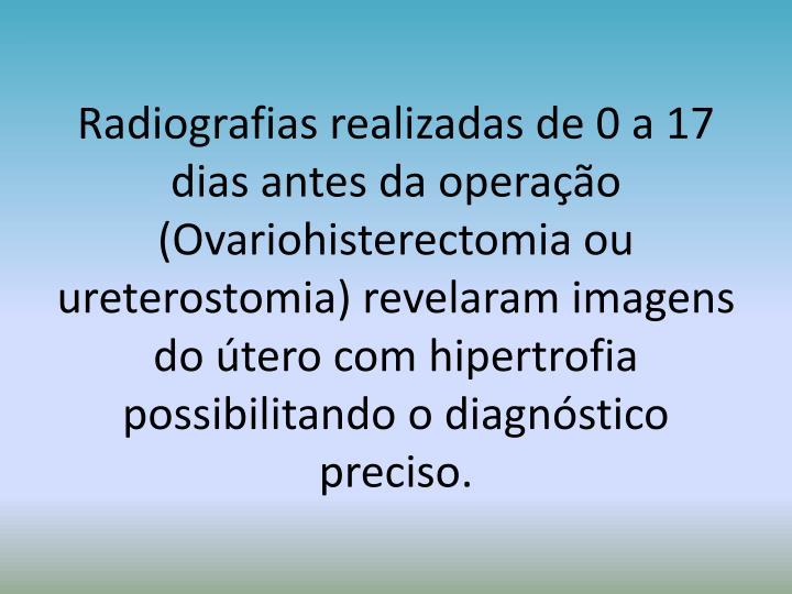 Radiografias realizadas de 0 a 17 dias antes da operação (Ovariohisterectomia ou ureterostomia) revelaram imagens do útero com hipertrofia possibilitando o diagnóstico preciso.