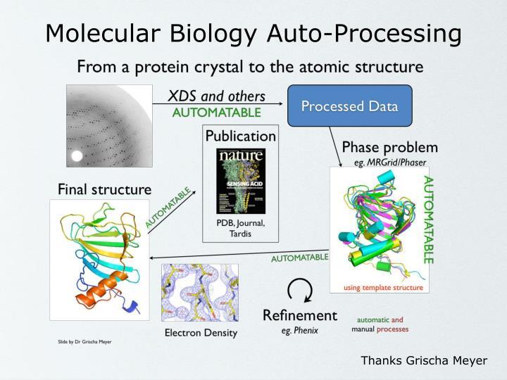 Molecular Biology Auto-Processing