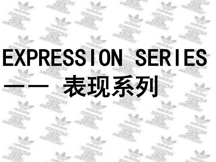 EXPRESSION SERIES ――