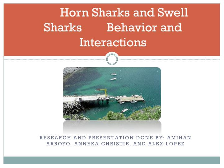 horn sharks and swell sharks behavior and interactions n.