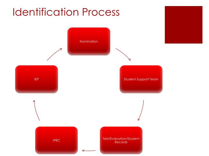 Identification Process