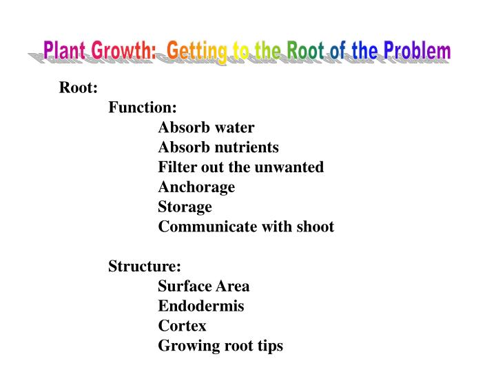Plant Growth:  Getting to the Root of the Problem