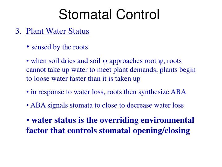 Stomatal Control