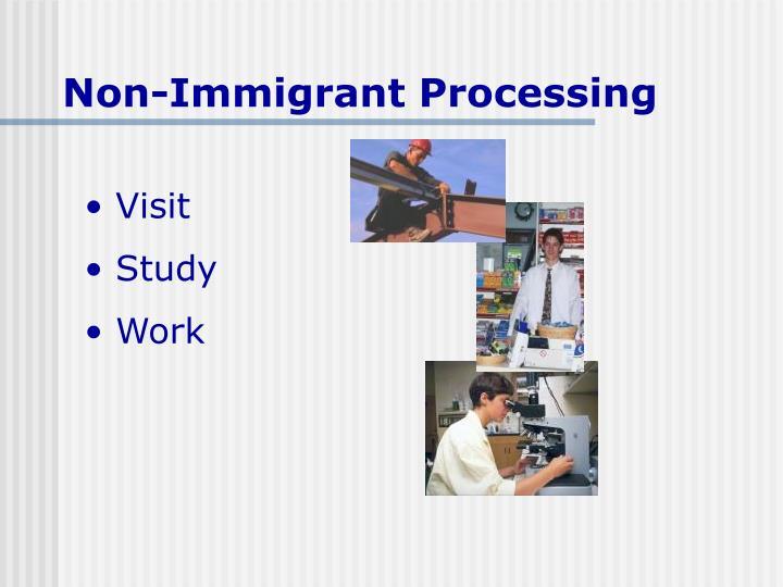Non-Immigrant Processing