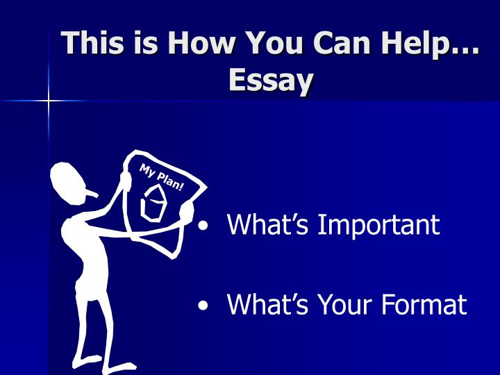 This is How You Can Help… Essay