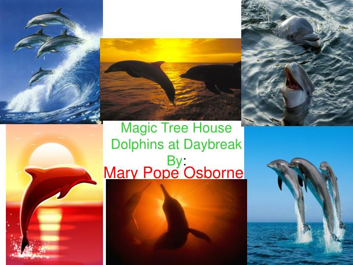 magic tree house dolphins at daybreak by n.