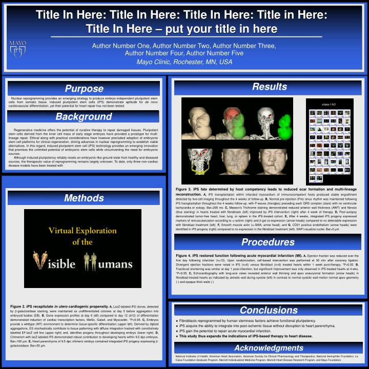 PPT - Mayo Clinic, Rochester, MN, USA PowerPoint