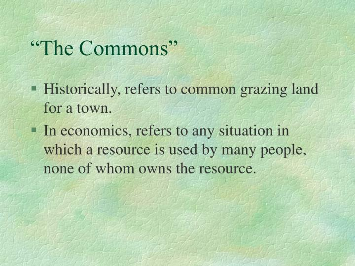 """The Commons"""
