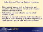 asbestos and thermal system insulation