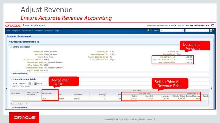 Adjust Revenue