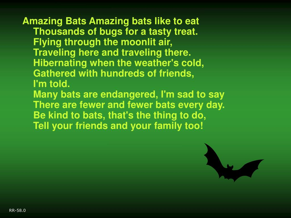 Image result for tasty bats?