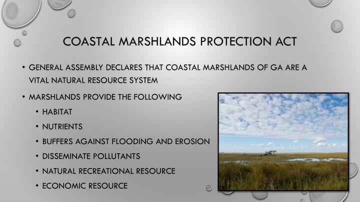 Coastal Marshlands Protection Act