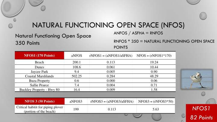 Natural Functioning Open Space (NFOS)