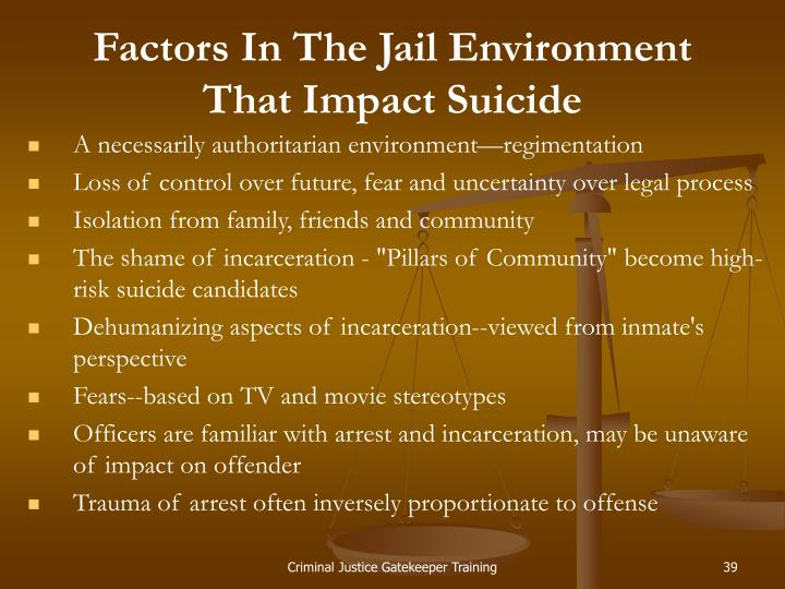 Factors In The Jail Environment That Impact Suicide