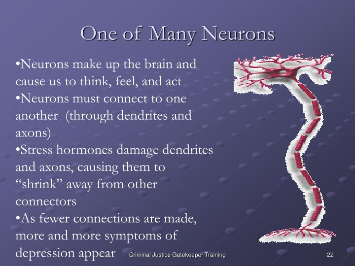 One of Many Neurons