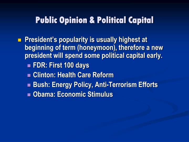 Public Opinion & Political Capital