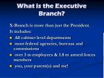 what is the executive branch