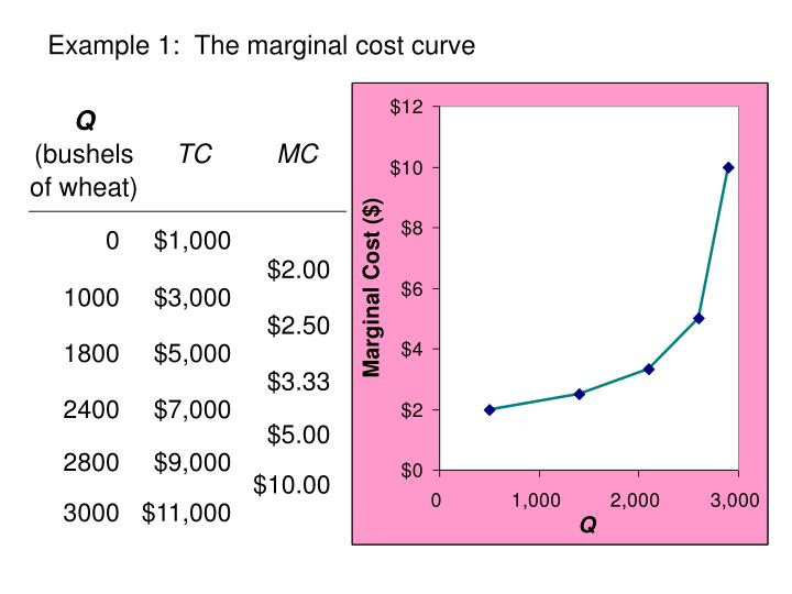 Example 1:  The marginal cost curve